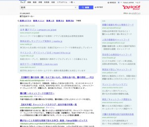 SEM/李スティング広告の例