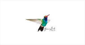 HummingBirds_airstream